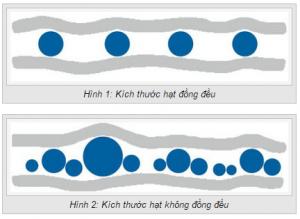 kich-thuoc-hat-bot-phun