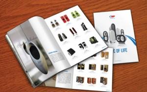 In catalogue chuyên nghiệp 2