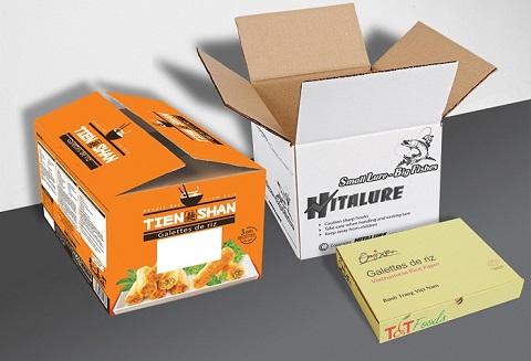 in hộp giấy carton -3