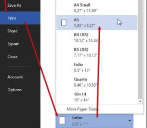 Chuyển khổ giấy a4 sang a5 trong page setup bước 2